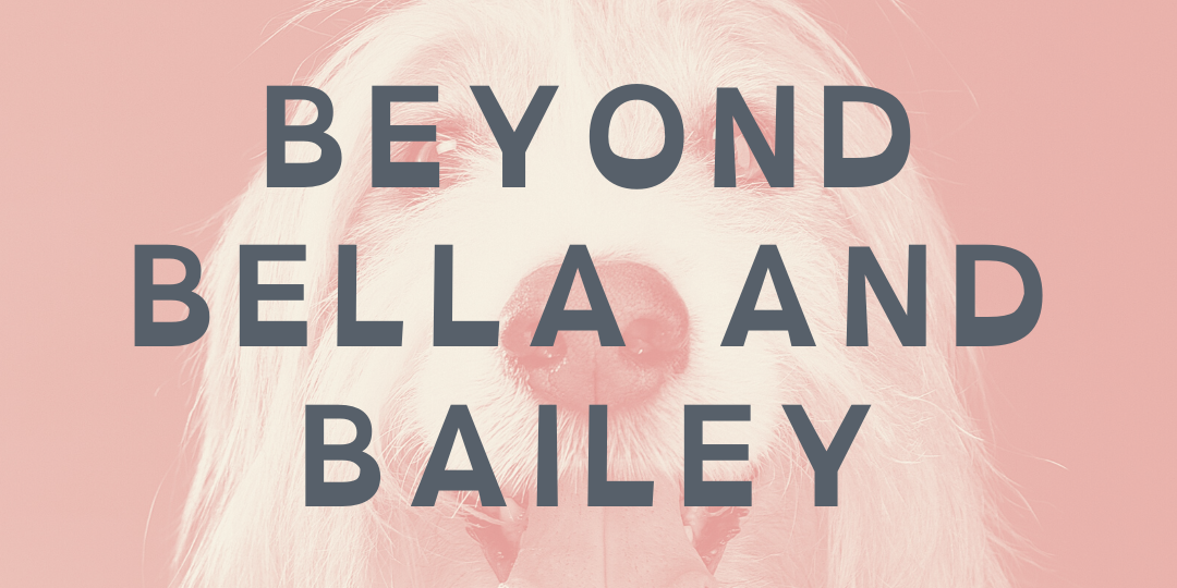 Beyond Bailey and Bella